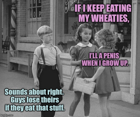 IF I KEEP EATING MY WHEATIES, I'LL A P**IS WHEN I GROW UP. Sounds about right. Guys lose theirs if they eat that stuff. | made w/ Imgflip meme maker