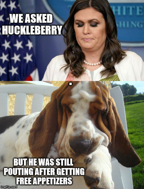 hucklesanders hound | WE ASKED HUCKLEBERRY BUT HE WAS STILL POUTING AFTER GETTING FREE APPETIZERS | image tagged in hucklesanders hound | made w/ Imgflip meme maker