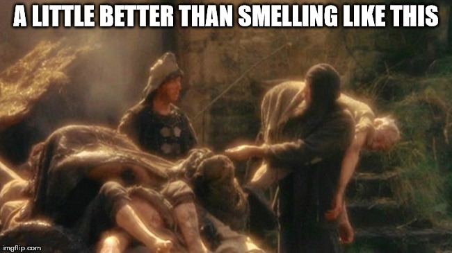 Holy Grail bring out your Dead Memes | A LITTLE BETTER THAN SMELLING LIKE THIS | image tagged in holy grail bring out your dead memes | made w/ Imgflip meme maker