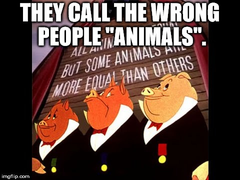 "Animal Farm Pigs | THEY CALL THE WRONG PEOPLE ""ANIMALS"". 