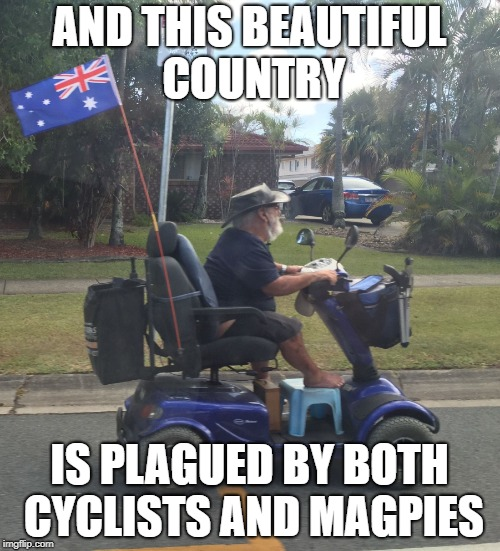 Straya Mateee | AND THIS BEAUTIFUL COUNTRY IS PLAGUED BY BOTH CYCLISTS AND MAGPIES | image tagged in straya mateee | made w/ Imgflip meme maker