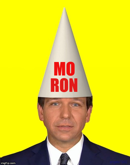 MO RON | image tagged in ron desantis,moron,florida,governor,racist,idiot | made w/ Imgflip meme maker