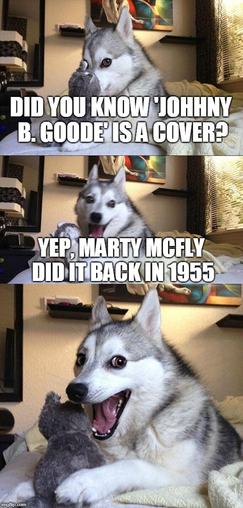 Beat Chuck Berry by 3 years | DID YOU KNOW 'JOHHNY B. GOODE' IS A COVER? YEP, MARTY MCFLY DID IT BACK IN 1955 | image tagged in memes,bad pun dog,funny,back to the future,music,marty mcfly | made w/ Imgflip meme maker