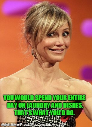whatever | YOU WOULD SPEND YOUR ENTIRE DAY ON LAUNDRY AND DISHES. THAT'S WHAT YOU'D DO. | image tagged in whatever | made w/ Imgflip meme maker
