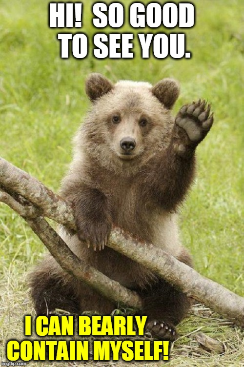 If You Like Me, You'll Love my Paw | HI!  SO GOOD TO SEE YOU. I CAN BEARLY CONTAIN MYSELF! | image tagged in vince vance,bears,bear cub,hello,hi,bear puns | made w/ Imgflip meme maker