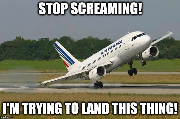Merde!  Merde!  Merde! |  STOP SCREAMING! I'M TRYING TO LAND THIS THING! | image tagged in memes,airliner,screaming,broken,wing | made w/ Imgflip meme maker