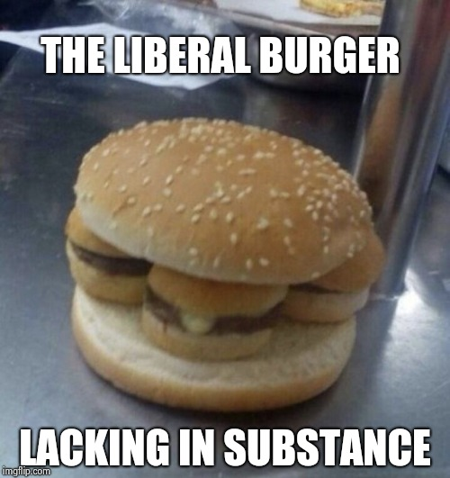 Nothing burger | THE LIBERAL BURGER LACKING IN SUBSTANCE | image tagged in nothing burger | made w/ Imgflip meme maker