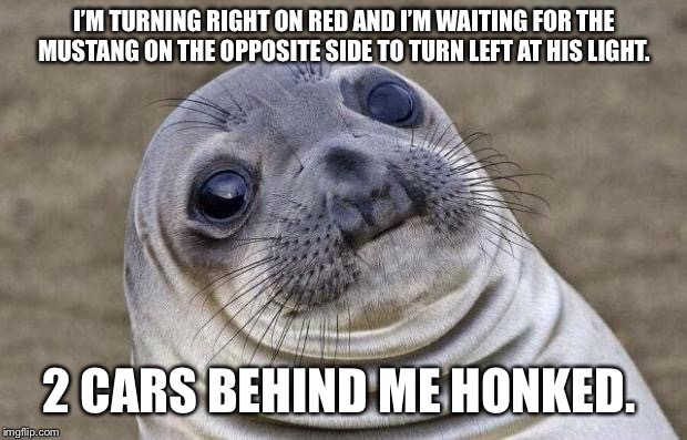 Awkward Moment Sealion Meme | I'M TURNING RIGHT ON RED AND I'M WAITING FOR THE MUSTANG ON THE OPPOSITE SIDE TO TURN LEFT AT HIS LIGHT. 2 CARS BEHIND ME HONKED. | image tagged in memes,awkward moment sealion,AdviceAnimals | made w/ Imgflip meme maker