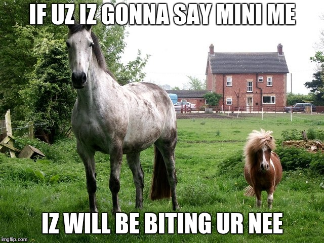 I'M NOT UR MINI ME!!!!!! | IF UZ IZ GONNA SAY MINI ME IZ WILL BE BITING UR NEE | image tagged in memes,funny,horses,ponies,cute,adorable | made w/ Imgflip meme maker