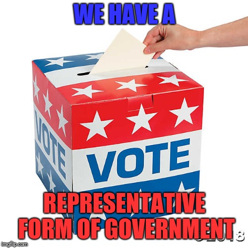 WE HAVE A REPRESENTATIVE FORM OF GOVERNMENT | made w/ Imgflip meme maker