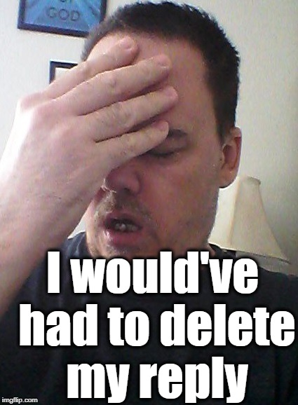 face palm | I would've had to delete my reply | image tagged in face palm | made w/ Imgflip meme maker