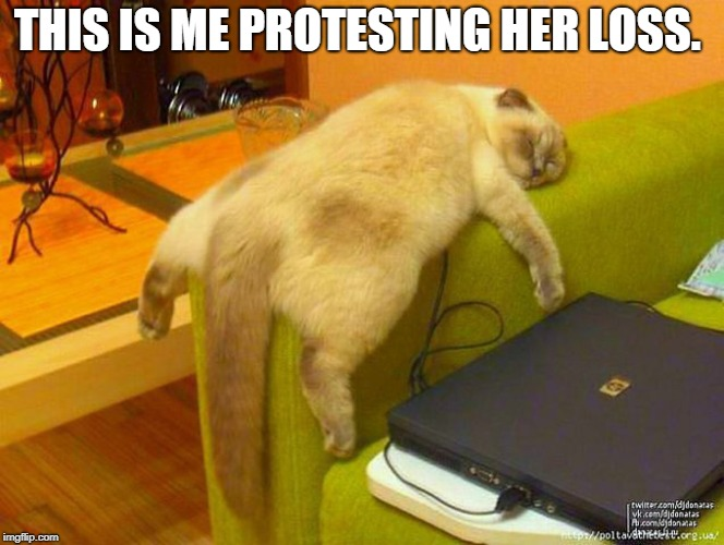 sleeping cat | THIS IS ME PROTESTING HER LOSS. | image tagged in sleeping cat | made w/ Imgflip meme maker