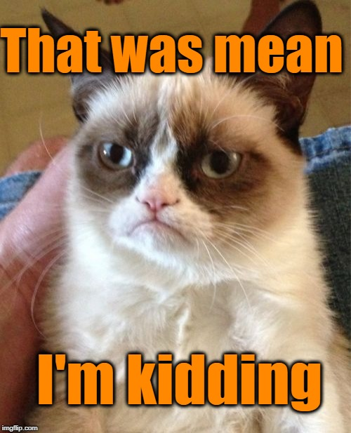 Grumpy Cat Meme | That was mean I'm kidding | image tagged in memes,grumpy cat | made w/ Imgflip meme maker