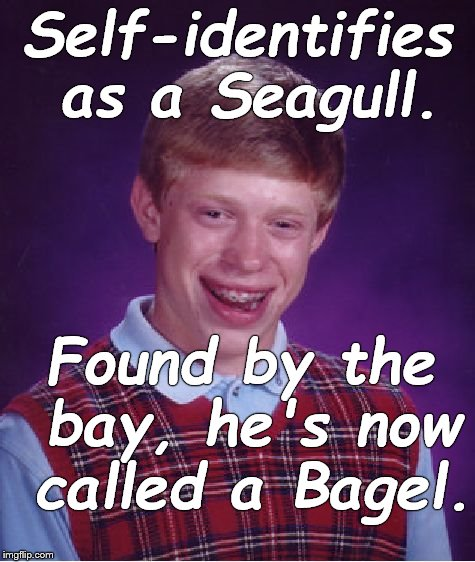 Don't you hate when people put labels on you? Do you hate it more when they ignore your own label for yourself? Is it a crisis? | Self-identifies as a Seagull. Found by the bay, he's now called a Bagel. | image tagged in bad luck brian,self-identifies,identity crisis,seagull,bagel,douglie | made w/ Imgflip meme maker