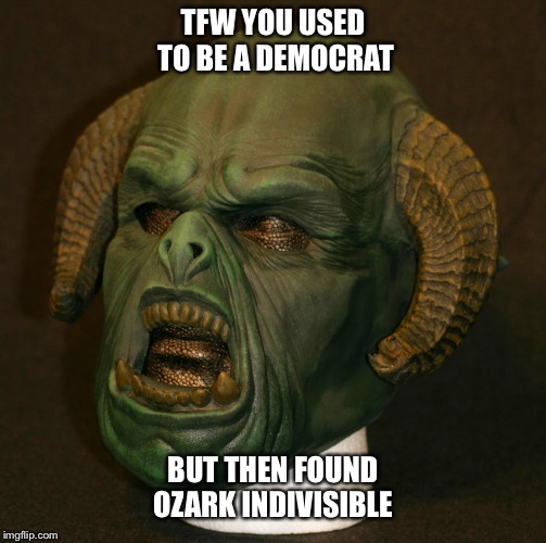 TFW YOU USED TO BE A DEMOCRAT; BUT THEN FOUND OZARK INDIVISIBLE | image tagged in ozark indivisible,2018 midterm,fascist,nwa,josh mahoney | made w/ Imgflip meme maker