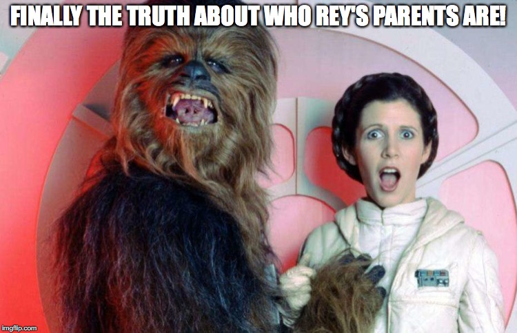 The truth is finally here. |  FINALLY THE TRUTH ABOUT WHO REY'S PARENTS ARE! | image tagged in chewbacca,princess leia,rey,wookie nookie | made w/ Imgflip meme maker