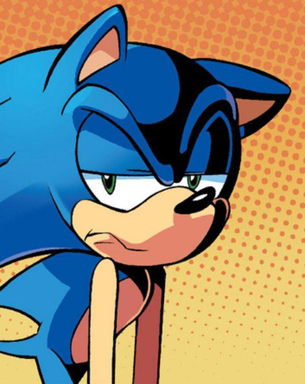 Annoyed Sonic Meme Generator - Imgflip