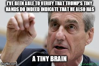 Mueller's got proof | I'VE BEEN ABLE TO VERIFY THAT TRUMP'S TINY HANDS DO INDEED INDICATE THAT HE ALSO HAS A TINY BRAIN | image tagged in mueller,trump,tiny | made w/ Imgflip meme maker