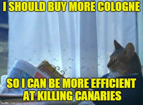 I Should Buy A Boat Cat Meme | I SHOULD BUY MORE COLOGNE SO I CAN BE MORE EFFICIENT AT KILLING CANARIES | image tagged in memes,i should buy a boat cat | made w/ Imgflip meme maker