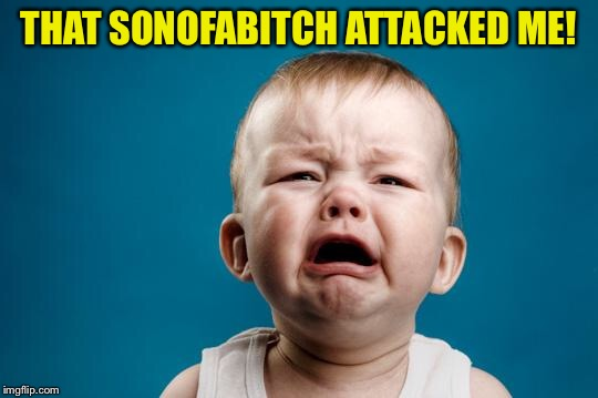 BABY CRYING | THAT SONOFAB**CH ATTACKED ME! | image tagged in baby crying | made w/ Imgflip meme maker
