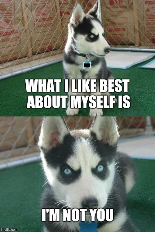 Burn |  WHAT I LIKE BEST ABOUT MYSELF IS; I'M NOT YOU | image tagged in memes,insanity puppy | made w/ Imgflip meme maker