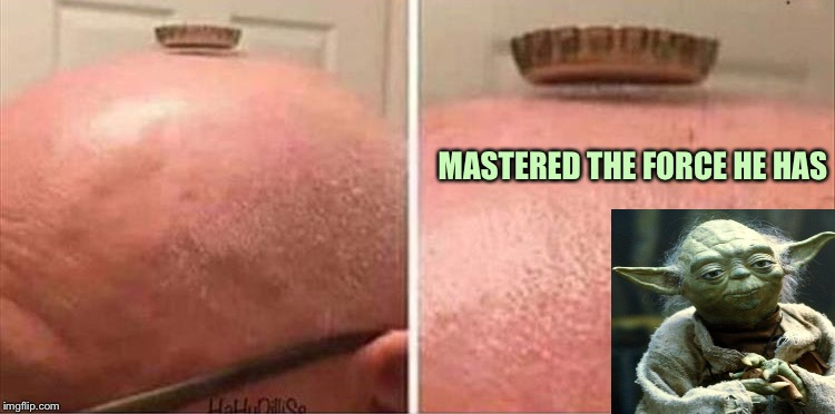 Uhhh, still bald. | MASTERED THE FORCE HE HAS | image tagged in bald,yoda,memes,funny | made w/ Imgflip meme maker