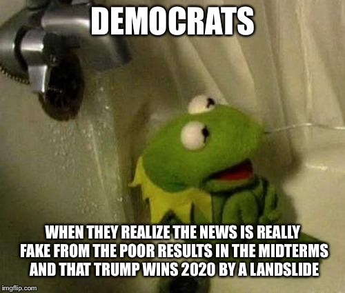 DEMOCRATS WHEN THEY REALIZE THE NEWS IS REALLY FAKE FROM THE POOR RESULTS IN THE MIDTERMS AND THAT TRUMP WINS 2020 BY A LANDSLIDE | made w/ Imgflip meme maker