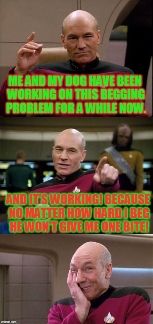 Training success! | ME AND MY DOG HAVE BEEN WORKING ON THIS BEGGING PROBLEM FOR A WHILE NOW. AND IT'S WORKING! BECAUSE NO MATTER HOW HARD I BEG HE WON'T GIVE ME | image tagged in bad pun picard,nixieknox,memes | made w/ Imgflip meme maker