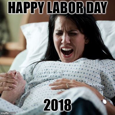 Happy labor day | HAPPY LABOR DAY 2018 | image tagged in labor,holidays,funny,memes | made w/ Imgflip meme maker