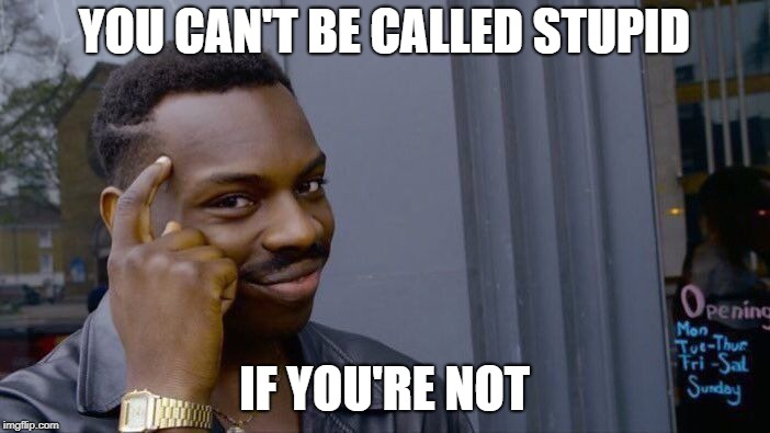Roll Safe Think About It Meme | YOU CAN'T BE CALLED STUPID IF YOU'RE NOT | image tagged in memes,roll safe think about it | made w/ Imgflip meme maker