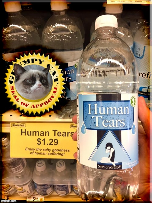 Grumpy Cat's Human Tears | image tagged in grumpy cat,tears,depression,crippling depression,sorrow,depressed | made w/ Imgflip meme maker