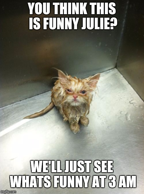 Kill You Cat | YOU THINK THIS IS FUNNY JULIE? WE'LL JUST SEE WHATS FUNNY AT 3 AM | image tagged in memes,kill you cat | made w/ Imgflip meme maker