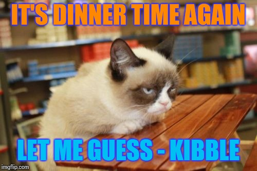 Grumpy Cat Table | IT'S DINNER TIME AGAIN LET ME GUESS - KIBBLE | image tagged in memes,grumpy cat table,grumpy cat | made w/ Imgflip meme maker