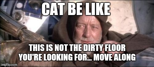 These Arent The Droids You Were Looking For Meme | CAT BE LIKE THIS IS NOT THE DIRTY FLOOR YOU'RE LOOKING FOR... MOVE ALONG | image tagged in memes,these arent the droids you were looking for | made w/ Imgflip meme maker