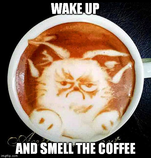 face it | WAKE UP AND SMELL THE COFFEE | image tagged in grumpy cat coffee foam,memes,funny,grumpy cat,barista,expectations vs reality | made w/ Imgflip meme maker