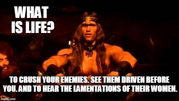 conan crush your enemies | WHAT IS LIFE? TO CRUSH YOUR ENEMIES. SEE THEM DRIVEN BEFORE YOU. AND TO HEAR THE LAMENTATIONS OF THEIR WOMEN. | image tagged in conan crush your enemies | made w/ Imgflip meme maker