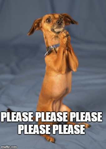Begging dog | PLEASE PLEASE PLEASE PLEASE PLEASE | image tagged in begging dog | made w/ Imgflip meme maker