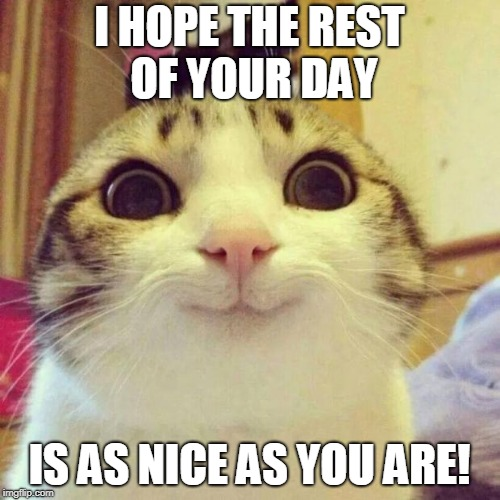 Smiling Cat Meme | I HOPE THE REST OF YOUR DAY IS AS NICE AS YOU ARE! | image tagged in memes,smiling cat | made w/ Imgflip meme maker