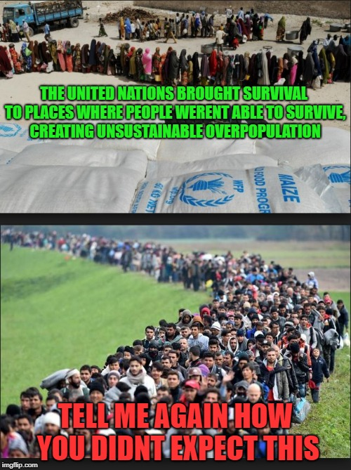 The logical outcome |  THE UNITED NATIONS BROUGHT SURVIVAL TO PLACES WHERE PEOPLE WERENT ABLE TO SURVIVE, CREATING UNSUSTAINABLE OVERPOPULATION; TELL ME AGAIN HOW YOU DIDNT EXPECT THIS | image tagged in united nations,immigrants,liberal hypocrisy,migrants | made w/ Imgflip meme maker