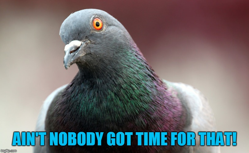 AIN'T NOBODY GOT TIME FOR THAT! | made w/ Imgflip meme maker