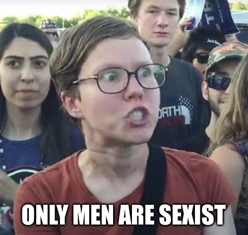 Triggered feminist | ONLY MEN ARE SEXIST | image tagged in triggered feminist | made w/ Imgflip meme maker