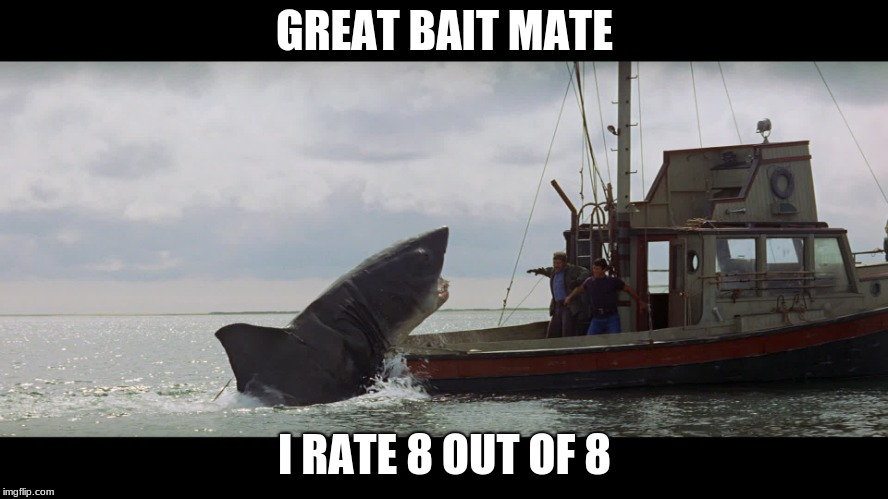 Great bait | GREAT BAIT MATE I RATE 8 OUT OF 8 | image tagged in jaws boat,funny,great bait,jaws,shark | made w/ Imgflip meme maker
