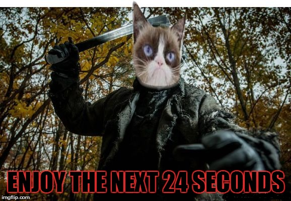 grumpy cat jason | ENJOY THE NEXT 24 SECONDS | image tagged in grumpy cat jason | made w/ Imgflip meme maker