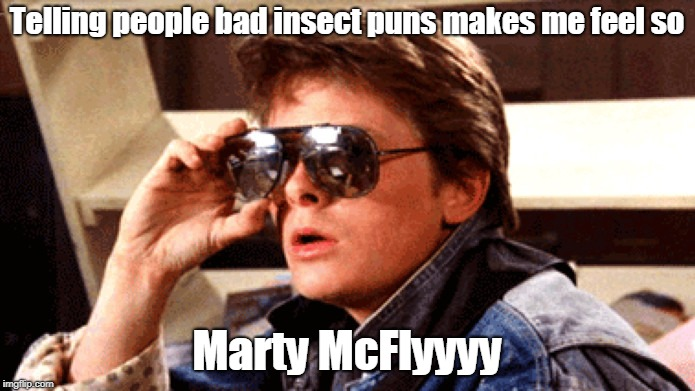 Telling people bad insect puns makes me feel so Marty McFlyyyy | made w/ Imgflip meme maker