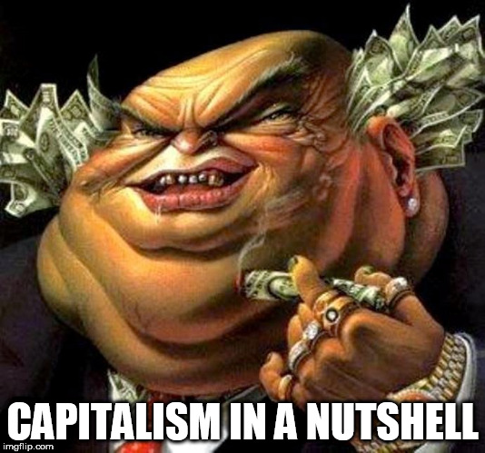 capitalist criminal pig |  CAPITALISM IN A NUTSHELL | image tagged in capitalist criminal pig,capitalism,capitalist,capitalists,money,corporate world | made w/ Imgflip meme maker