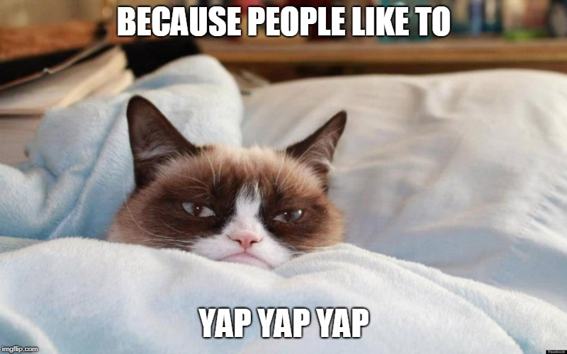 grumpy cat bed | BECAUSE PEOPLE LIKE TO YAP YAP YAP | image tagged in grumpy cat bed | made w/ Imgflip meme maker