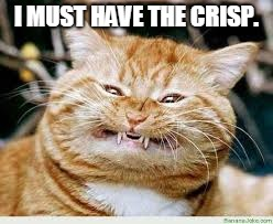 Cat | I MUST HAVE THE CRISP. | image tagged in cat | made w/ Imgflip meme maker