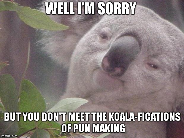 Dank Koala | WELL I'M SORRY BUT YOU DON'T MEET THE KOALA-FICATIONS OF PUN MAKING | image tagged in dank koala | made w/ Imgflip meme maker