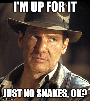 Indiana jones | I'M UP FOR IT JUST NO SNAKES, OK? | image tagged in indiana jones | made w/ Imgflip meme maker