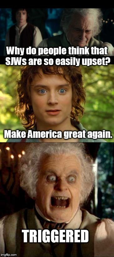 triggered | Why do people think that SJWs are so easily upset? Make America great again. TRIGGERED | image tagged in mene,frodo,bilbo | made w/ Imgflip meme maker
